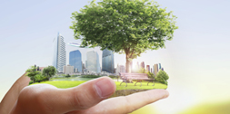 Green Building Materials Accelerate Change